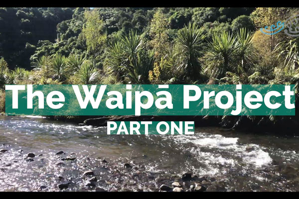 WAIPA-PART-ONE_yt