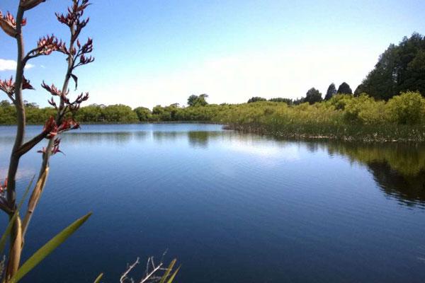 shallow_lakes